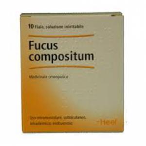 HEEL FUCUS COMPOSITUM 10 FIALE DA 2,2 ML L'UNA