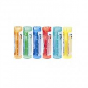 BRYONIA*granuli 30 CH contenitore multidose