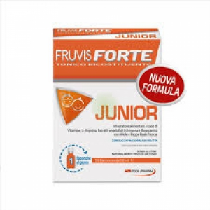 FRUVIS FORTE JUNIOR 10 FLACONCINI DA 10 ML